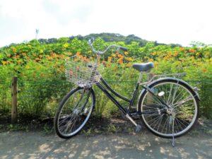 シティサイクル 自転車