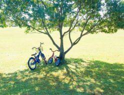 子どもと一緒に自転車でお出かけ